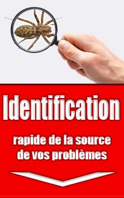 Identification rapide de la source de vos problèmes